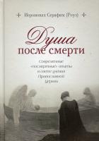 """Душа после смерти. Современные """"посмертные"""" опыты в свете учения Православной Церкви"""
